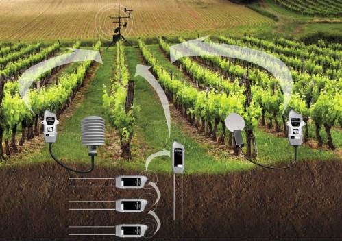 Produktnyhet: Trådløst sensornettverk